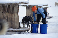 A young woman feeds sled dogs at their kennels in Jackson Hole, Wyoming.