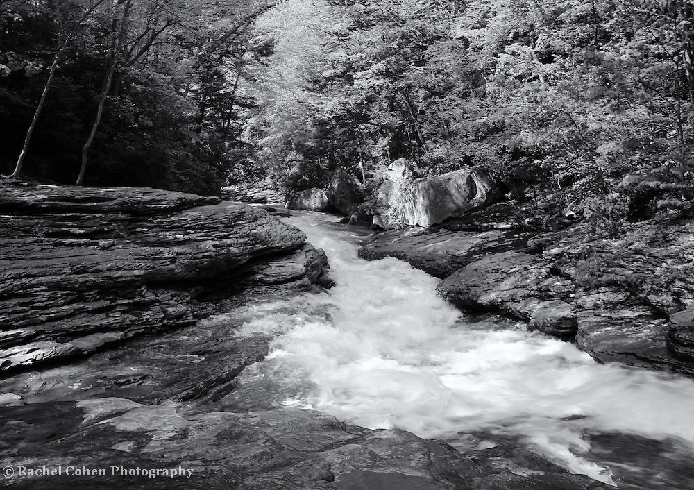 """""""River of Life""""<br /> <br /> Wonderful rapidly flowing water among rocks and surrounded by a forest In PA."""