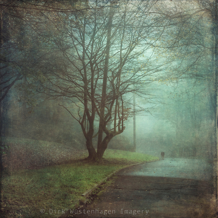Person walking the dog on a misty November morning - texturized photograph
