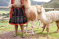 Woman along the side of the road with an Alpaca and Llama.