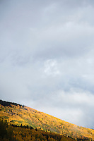 Scenic image of Kebler Pass along Highway 12 near Crested Butte, Colorado.
