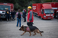 Rescue services return from searching for survivers and bodies at Soma mine, western Turkey. More than 238 have been killed in the worst mining incident in Turkey for decades, caused by an explosion after an electrical fault.