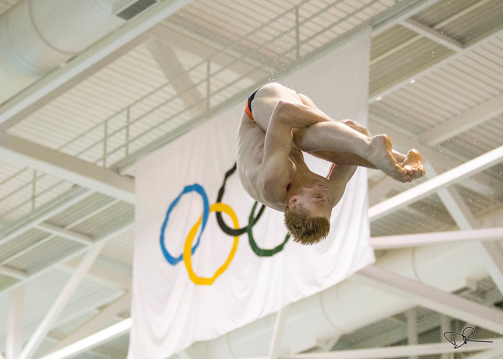A University of Tennessee diver flips in front of the Olympic Rings during a team practice at the UT Aquatic Center.