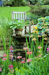 Seat by the pond with rodgersias, hostas, primulas and iris.