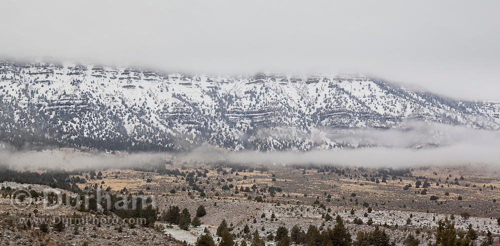 A morning frost of snow in the mountains around Branson Creek, adjacent to the John Day Fossil Beds National Monument, Oregon. Bighorn sheep thrved in this habitat until they dies off around 1900. They were re-introduced in 2010.