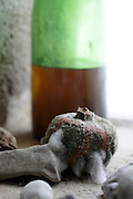 detail of old wine bottle with molding passion fruit and stones near window