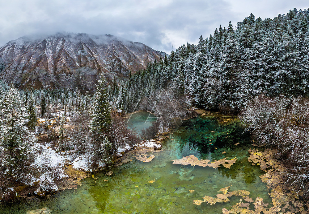 Aerial view of trees covered with snow at Huanglong lake, Sichuan, China
