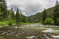 Two fly fisherman fish the riffle areas of the Gallatin River in Montana.