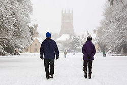 © Licensed to London News Pictures 10/12/2017, City, UK. People walking dogs and enjoying the heavy fall of snow in Cirencester Park, Gloucestsershire, UK. Photo Credit : Stephen Shepherd/LNP