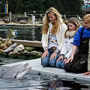 NLD/Harderwijk/20100320 - Opening nieuwe Dolfinarium seizoen met nieuwe show, Inge de Bruijn met moeder Rika, en nichtje Annika aaien de dolfijn