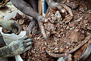 Unlicensed miners are filling sacks with ore containing gold and other metals, including lead, to be sold and processed in artisanal sites, near Dareta village, Zamfara State, Nigeria. On October 28, 2011, in this very same mining site, four workers died buried under the ground when a pit suddenly collapsed. The lead contamination is caused by ingestion and breathing of particles released in the steps to isolate the gold from other metals. This type of lead is soluble in stomach acid and children under-5 are most affected, as they tend to ingest more through their hands by touching the ground, and are developing symptoms often leading to death or serious disabilities.