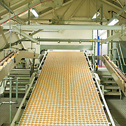 Jam (jelly) and cream ring biscuits in factory