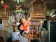 05 JANUARY 2017 - BANGKOK, THAILAND:       A woman and her son look at artisan bird cages made by her family in the Pom Mahakan slum. More than 40 families still live in the Pom Mahakan Fort community. Bangkok officials are trying to move them out of the fort and community leaders are barricading themselves in the fort. The residents of the historic fort are joined almost every day by community activists from around Bangkok who support their efforts to stay. City officials pushed back their deadline and now say that they expect to have the old fort cleared of residents and construction on the new park started by the end of February 2017.      PHOTO BY JACK KURTZ