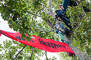 Protestors camp in trees during an Extinction Rebellion climate change protest at Parliament Square in London, Thursday, Sept. 3, 2020. The environmental nonviolent campaign group Extinction Rebellion plans to hold 10 days of demonstrations across central London as part of its ongoing campaign to highlight climate change. Peaceful actions swarmed central London into a standoff, demanding that the central government obeys and delivers Climate and Ecological Emergency Bill and prepare for crisis with a National Citizens' Assembly. (VXP Photo/ Vudi Xhymshiti)