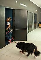 """01.10.2016 Bialystok woj podlaskie Niecodzienny seans odbyl sie w bialostockim kinie Forum . Widzowie razem ze swoimi psami mogli obejrzec film pt. """" Serce psa """" fot Michal Kosc / AGENCJA WSCHOD"""
