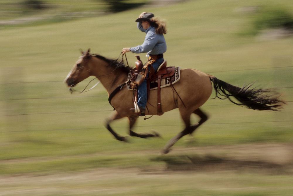North America, United States, Montana, Boulder River Valley, female wranglers on horseback (blulrred motion)