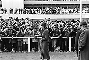 Lady Diana Spencer surrounded by photographers and members of the public while watching Prince Charles race at Sandown Park. 1981. © Copyright Photograph by Dafydd Jones 66 Stockwell Park Rd. London SW9 0DA Tel 020 7733 0108 www.dafjones.com