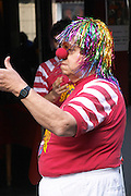A street comedian dressed up as a clown with a wig false hair in coloured metal stripes and a big red round nose, in the restaurant El Palenque, the sword fish swordfish, in the Mercado del Puerto, the market in the port harbour harbor where many people go and eat and shop on weekends Montevideo, Uruguay, South America