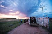 Cowboy staff meeting at the Howard Ranch.