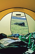 A boulder framed by a tent opening, at the foot of Hvannadalshnúkur mountain on Vatnajökull glacier. Skaftafell National Park, Iceland, 1999