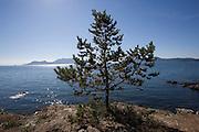 Doe Island, San Juan Islands, Washington State<br />