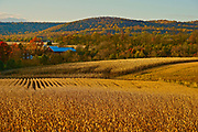 Autumn, Farms, Oley Valley, Berks County, PA