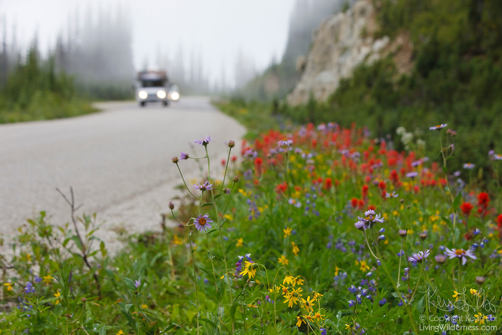 Tourists travel on the Meadows in the Sky Parkway, a roadway in Revelstoke National Park, Canada, that leads to subalpine meadows. These tourists explored the park in early August at the peak of the summer wildflower season.