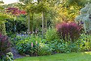 Donadea Garden - June