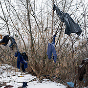 Cloths belonging to migrants are seen drying hanging from a tree near the old warehouses beside Belgrade's main railway station.
