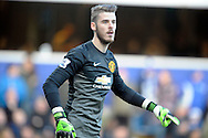 David De Gea , the Manchester United goalkeeper. Barclays Premier league match, Queens Park Rangers v Manchester Utd at Loftus Road in London on Saturday 17th Jan 2015. pic by John Patrick Fletcher, Andrew Orchard sports photography.
