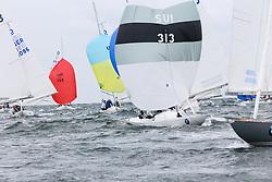 , Kühlungsborn -  Dragon Grand Prix 15. - 18.06.2014, Drachen - SUI 313 - Free - Oldenburg, Dirk
