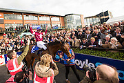 Horse Racing - Fairyhouse Easter Festival, Monday 28th March 2016<br /> Ger Fox celebrates as he leads Rogue Angel into the parade ring after winning the 2016 Grand National<br /> Photo: David Mullen /www.cyberimages.net / 2016