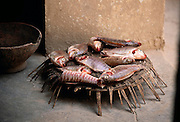 Fish from the nearby Niger River will be dinner for Albert Gano's family in Kouakourou, Mali. Material World Project.