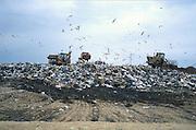 søppelfylling, Sardinia..dias Sardinia, Italy.