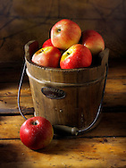 Fresh Discovery apple