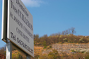 a sign indicating the winery and in the background a vineyard in Condrieu. Domaine Yves Cuilleron, Chavanay, Ampuis, Rhone, France, Europe