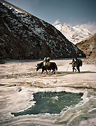 Trekking with yak herder Mohammad and Malang up the frozen Wakhan River, the only way up to the Little Pamir..Winter expedition through the Wakhan Corridor and into the Afghan Pamir mountains, to document the life of the Afghan Kyrgyz tribe. January/February 2008. Afghanistan
