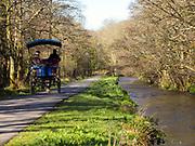 A juanting car passes along the River Deenagh in the Killarney Demesne near Ross Castle, Killarney, Kerry, ireland.<br /> PHOTO: Don MacMonagle<br /> macmonagle.com