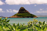 Chinaman's Hat on the windward side of Oahu, Hawaii with tropical foiage in the foreground.
