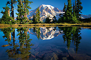 Mountain tarn reflecting Mount Rainier at dawn, Mount Rainier national park, Washington, USA
