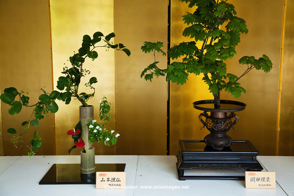 Bonsai is the art of growing trees in containers. Bonsai is sometimes confused with dwarfing but dwarfing refers to creating plant material that are permanent, genetic miniatures of existing species.