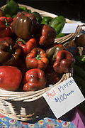 Market, St. Augustine, Florida, USA<br />