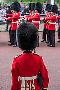 Guardsmen line the route - Queens 90th birthday was celebrated by the traditional Trooping the Colour as well as a flotilla on the river Thames.