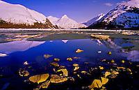 Portage Lake surrounded by the Portage Glacier, Alaska USA