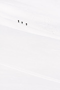 Backcountry skiers ascend a snow slope for another ski descent in Garibaldi Provincial Park, British Columbia, Canada.