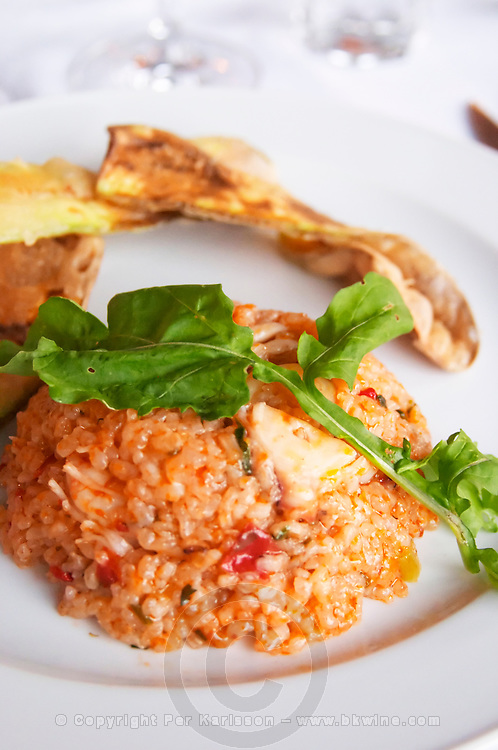 Seafood risotto. Kontosoros restaurant and guest house, Xino Nero, Amyndeo, Macedonia, Greece