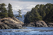 Small pristine islands near the Johnstone Straight off of Vancouver Island that are well traveled by the Northern Orca pods.  (Steve Ringman / The Seattle Times)
