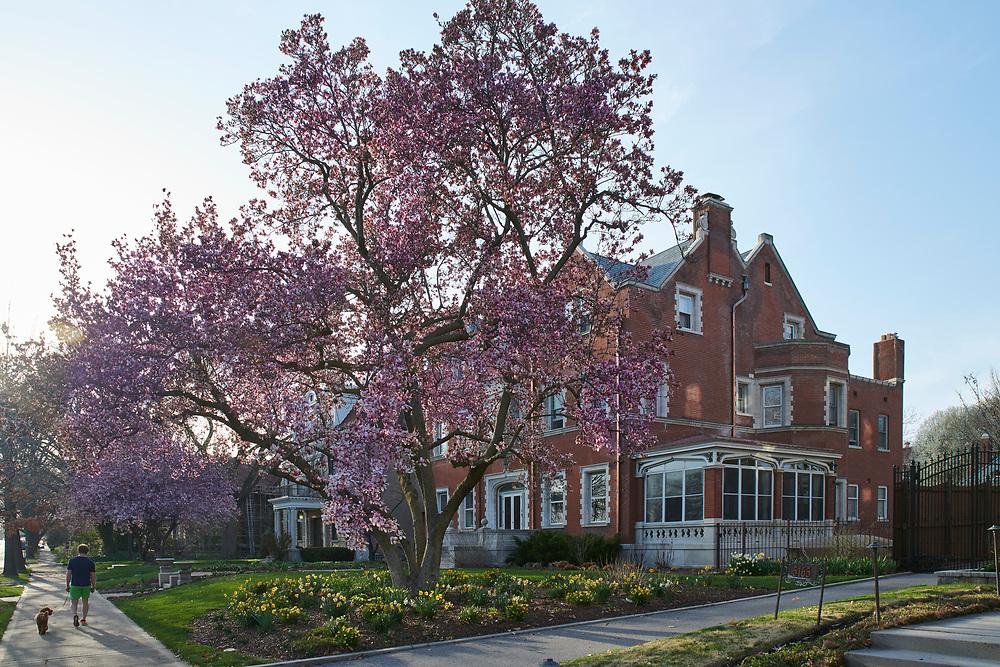 Central West End home on April 12, 2018.