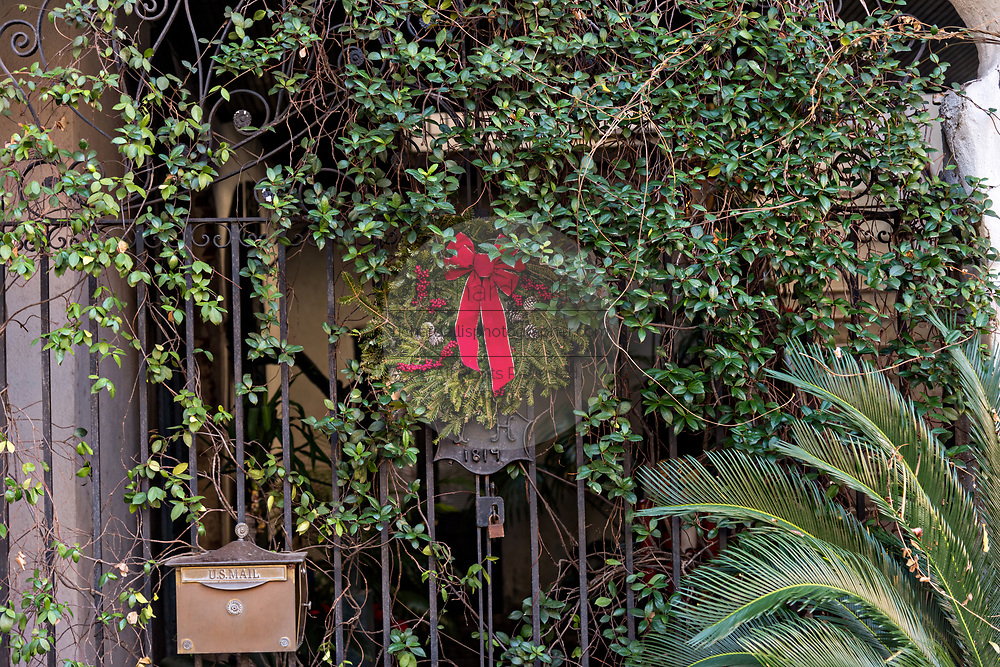 A Christmas wreath nearly lost in fig vine hangs from a historic home along State Street in Charleston, SC.