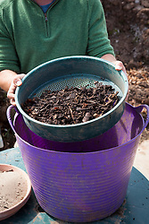 Showing what's left after sieving leaf mould
